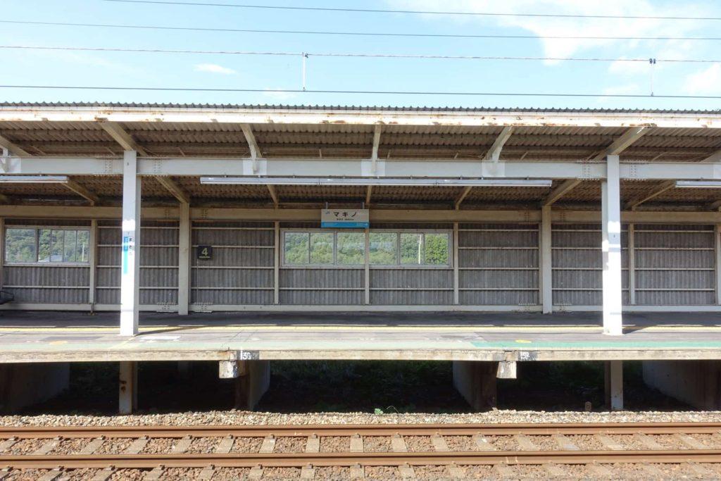 メタセコイア 並木 滋賀県 マキノ町 高島市 アクセス 行き方 電車 マキノ駅